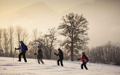 Tipps rund um das Schneeschuhwandern