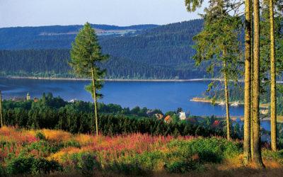Der Westweg – Wanderhighlight des Schwarzwaldes