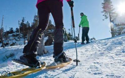 Aktiv im Winter – Winterwandern im Bayerischen Wald